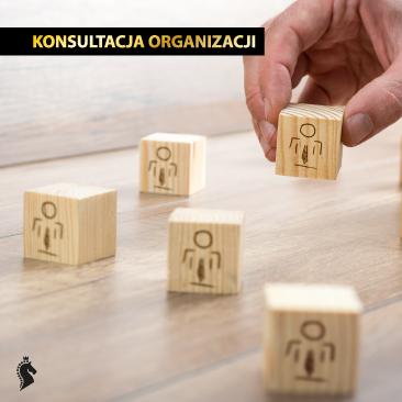 Konsultacja organizacji – silny zespół